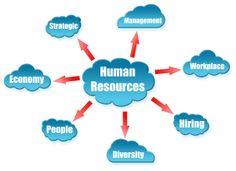 HR Officer Duties Include: